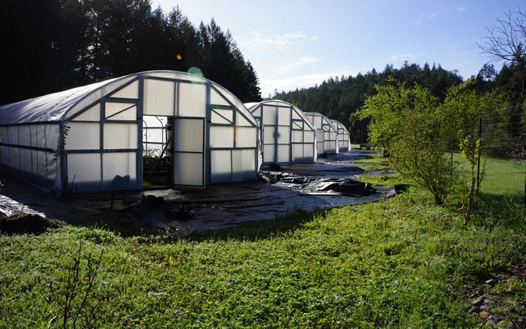 farm-river004