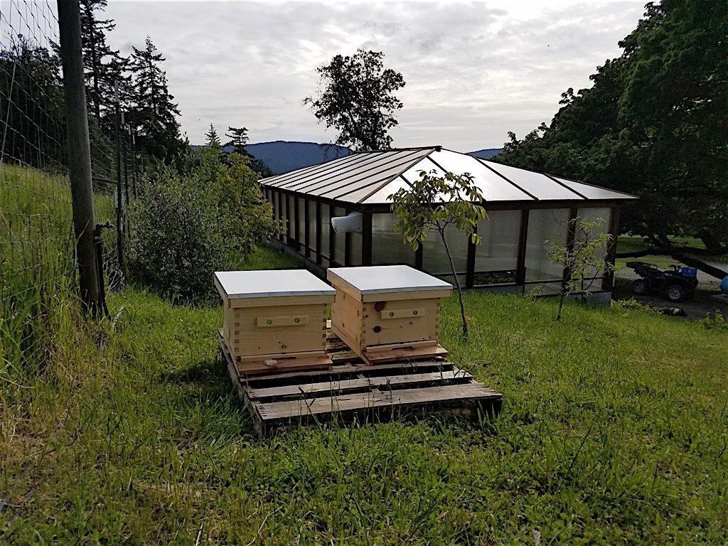 humboldt-hills-natural-farms-20160426_165059